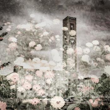 Stad i blom